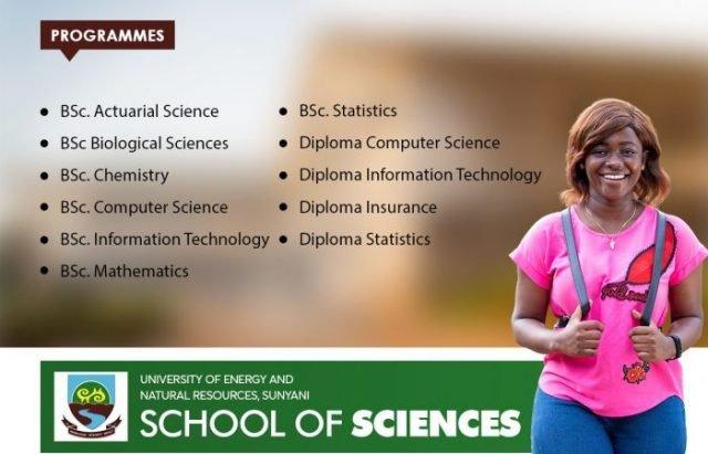UENR Courses