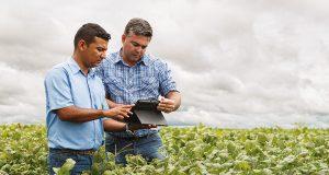 Agribusiness Job Opportunities in Ghana