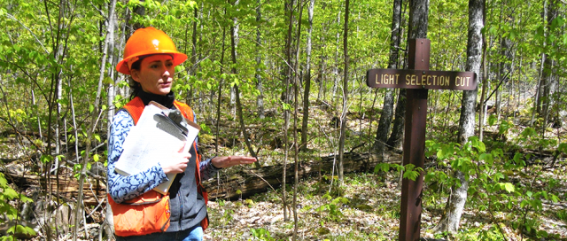 Career Opportunities In Offering Forest Resources Technology